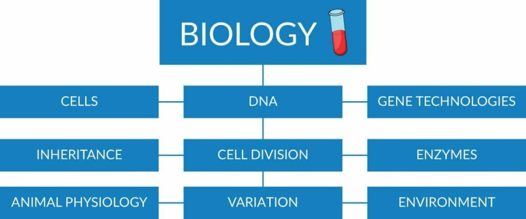 Biology - cells/DNA/gene technologies/inheritance/cell division/enzymes/animal physiology/variation/environment