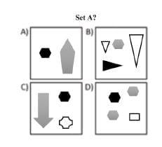 set-a-answer-option