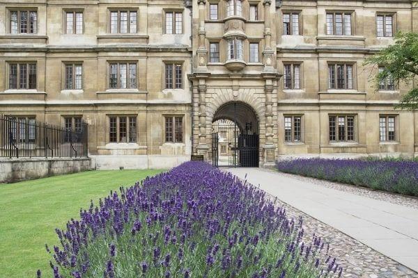 Clare College Cambridge Natural Sciences